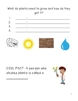 Plants Unit Packet