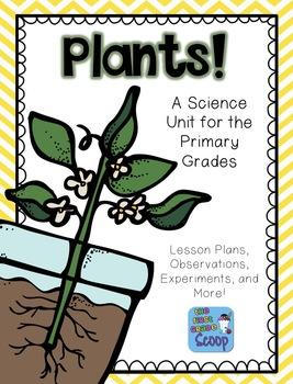 Plants Unit Plan for Primary Grades