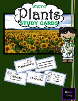 Plants Unit Flash Cards