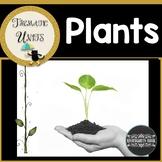 Plants Thematic Unit