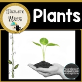 Plants Activities Math Literacy Science and More