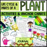 Plants Unit and Anchor Charts BUNDLE