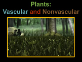 Plants: Vascular and Nonvascular (lots of animations)