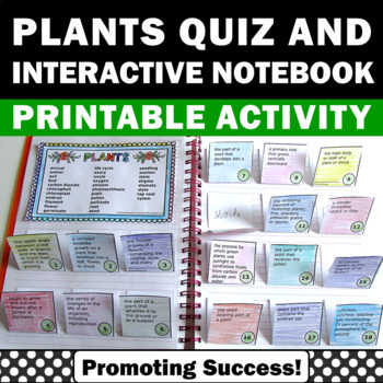 Plant Interactive Notebook, Summer School Activities, Plants Vocabulary Unit