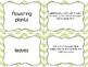 Plants Vocabulary Matching Game
