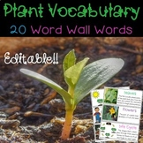 Plants Vocabulary Word Wall