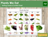 Plants We Eat Sorting Cards & Control Chart