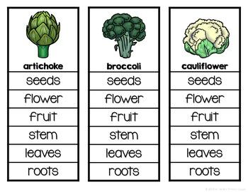 Plants We Eat Clip Cards