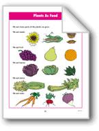 Plants We Use