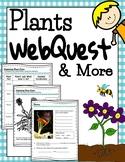 Plants WebQuest & More