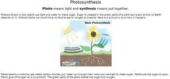 Plants and photosynthesis Webquest