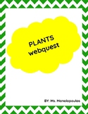 Plant Webquest