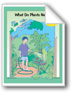Plants: What Do Plants Need?