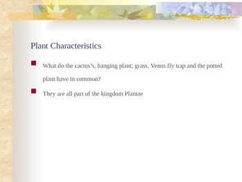 Plants - What is a Plant