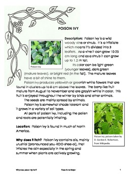 Burning Questions:  Why Does Poison Ivy Itch?  Plants