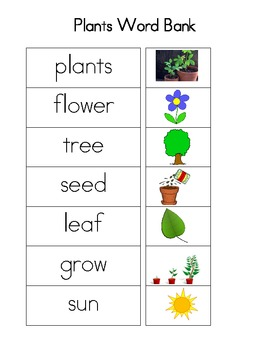 Plants Word Bank