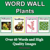 Plants Word Wall