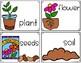 Plants Write the Room