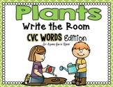 Plants Write the Room - CVC Words Edition
