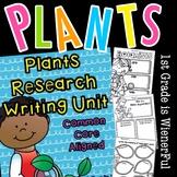 Plants Plants Unit | Distance Learning