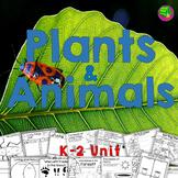 Plants and Animals
