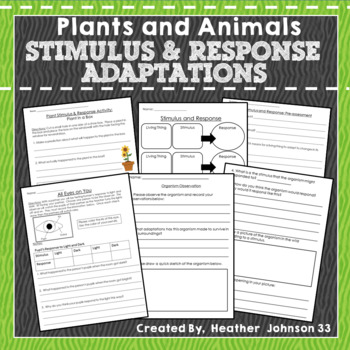 Adaptations, Stimulus and Response, Plants and Animals, Mini-Unit, Bundle