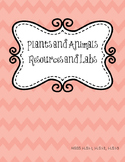 Plants and Animals Labs