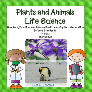 Plants and Animals - Life Science NGSS