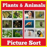 Plants and Animals Sort Activity