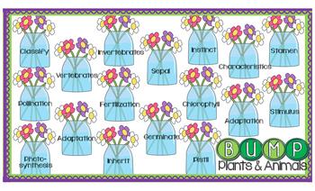 Plants and Animals Vocabulary Game Quiz