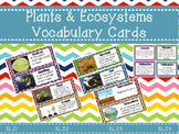 Plants and Ecosystems Vocabulary Cards 3.L.2