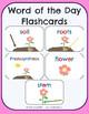 Plants & Flowers - No-Prep Thematic Unit