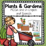 Plants and Gardens Bilingual Unit: Preschool and Kinder Activities