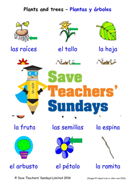Plants and Trees in Spanish Worksheets, Games, Activities and Flash Cards