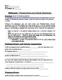 Bioenergitics - Photosynthesis and Cellular Respiration Webquest