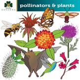 Plants and their Pollinators Clip Art Set