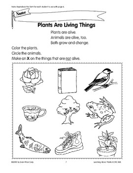 Plants are living things.