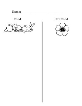 Plants as Food Sorting Activity