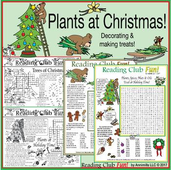 Plants at Christmas: Decorating and Making Treats