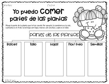 Plants (All about plants) {Spanish}