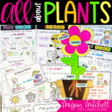 Plants for Primary Teachers #SPRINGSAVINGS