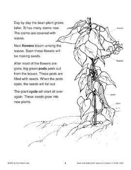 Plants from Seeds (Life Science/Life Cycle)
