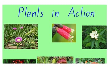 Stage 2 Science Plants in Action Smartboard Pages