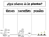 Plants (las plantas)