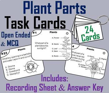 Parts of a Plant and Plant Life Cycle Task Cards and Activities Bundle