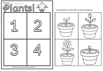 Plants sequence(free)