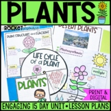 Plants: structures, life cycles, photosynthesis, adaptations, and more!