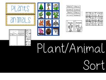 Plants vs. Animals