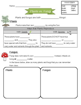 Plants vs. Fungi Worksheet