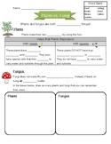 Plants vs. Fungi Worksheet